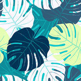 Seamless pattern with palm leaves. Abstract  background with colored palm leaves Royalty Free Stock Photo