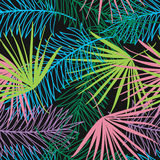 Seamless pattern with palm leaves Stock Images