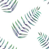 A seamless pattern with the palm leaves, fern leaves, hand-drawn in watercolor on a white background. A seamless pattern with the green palm leaves, fern leaves Stock Photography