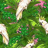 Seamless pattern with palm leaves and parrots Royalty Free Stock Photos