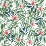 Seamless pattern with palm leaves and pink plumeria flowers . Watercolor illustration. stock illustration