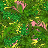Seamless pattern with palm leaves Stock Photo