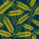 Seamless pattern with palm leaves Royalty Free Stock Photography