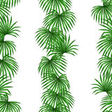 Seamless pattern with palms leaves. Decorative image tropical leaf of palm tree Livistona Rotundifolia. Royalty Free Stock Photo