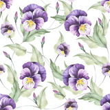 Seamless pattern with pansies. Hand draw watercolor illustration Stock Photo
