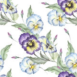 Seamless pattern with pansies. Hand draw watercolor illustration Stock Photography
