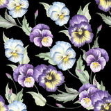 Seamless pattern with pansies. Hand draw watercolor illustration Royalty Free Stock Photography