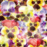 Seamless pattern pansy flowers. Vector, EPS10 Royalty Free Stock Image