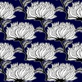 Seamless pattern with aster chrysanthemum flowers. stock illustration