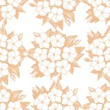 Seamless pattern with Hydrangea naive flowers. vector illustration