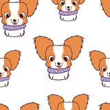Seamless pattern with papillon puppies. Colorful vector illustration Stock Photos