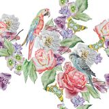 Seamless pattern with parrot, butterfly and flowers. Rose. Orchid. Watercolor illustration. Hand drawn Royalty Free Stock Photography