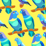 Seamless pattern parrot lovebirds couple sitting head turned blu Royalty Free Stock Images