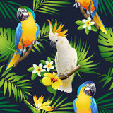 Seamless pattern of parrots cockatoo on the tropical branches with leaves and flowers on dark. Hand drawn stock illustration