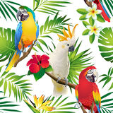 Seamless pattern of parrots cockatoo on the tropical branches with leaves and flowers on dark. Hand drawn royalty free illustration