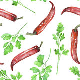 A seamless pattern with the  parsley and red chili peppers. Painted hand drawn in a watercolor on a white background Stock Image