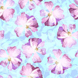 Seamless Pattern with pastel pink roses Stock Photography