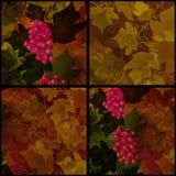 Seamless pattern patchwork style grape background Stock Photo