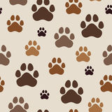 Seamless pattern with paw prints Royalty Free Stock Images