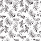 Seamless pattern of peacock feather Stock Photo