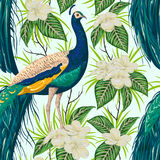 Seamless pattern with peacock, flowers and leaves. vector illustration