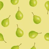 Seamless pattern with a pear. Stock Image