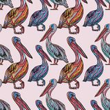 Seamless pattern with pelicans. Seamless pattern with pelicans on pink background. Vector illustration Royalty Free Stock Photo