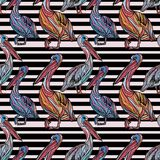 Seamless pattern with pelicans. Seamless pattern with pelicans and black stripes. Vector illustration Royalty Free Stock Photo
