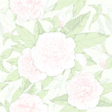 Seamless pattern peonies and buds Stock Photography