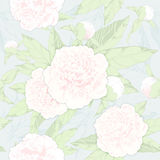 Seamless pattern peonies and buds on a light background.vector illustration Royalty Free Stock Photos