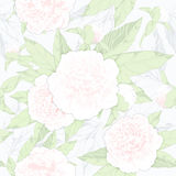 Seamless pattern peonies and buds on a light background.vector illustration Stock Images