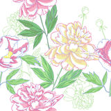 Seamless pattern  with peonies flowers Stock Image
