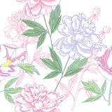 Seamless pattern  with peonies and leaves Stock Photos