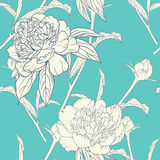 Seamless pattern with peonies Royalty Free Stock Image