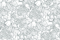 Seamless pattern with peonies Royalty Free Stock Photography
