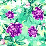 Seamless pattern of peonies in watercolor. royalty free illustration