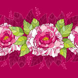 Seamless pattern with peony flower in pink and green leaves on the dark background. Royalty Free Stock Image