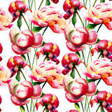 Seamless pattern with Peony flowers Royalty Free Stock Photos