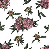 Seamless pattern with peony. royalty free illustration