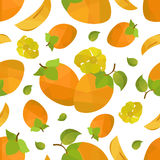 Seamless pattern persimmon and flower Royalty Free Stock Photography