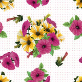 Seamless pattern,  petunias Royalty Free Stock Image