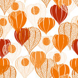 Seamless pattern with  physalis. Abstract floral background. Royalty Free Stock Photos
