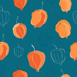 Seamless pattern with physalis Stock Photography