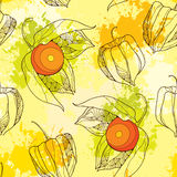Seamless pattern with Physalis or Cape gooseberry on the colorful blots background Royalty Free Stock Photography