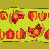 Seamless pattern with Physalis or Cape gooseberry in red and in orange on the green background Royalty Free Stock Photo