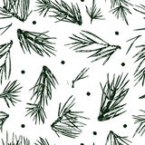 Seamless  pattern with pine branches, pine tree Stock Photography