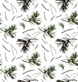 Seamless pattern with pine branches, vector background with needles. Nature graphic texture.  Royalty Free Stock Photos