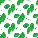 Seamless pattern with pine cones. Flat style vector illustration Stock Photo
