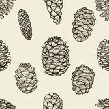 Seamless pattern with pine cones. Hand drawn sketch style vector illustration Royalty Free Stock Photo