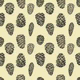 Seamless pattern with pine cones. Hand drawn sketch style vector illustration Stock Photo